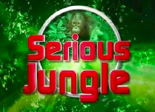 Serious jungle logo.jpg