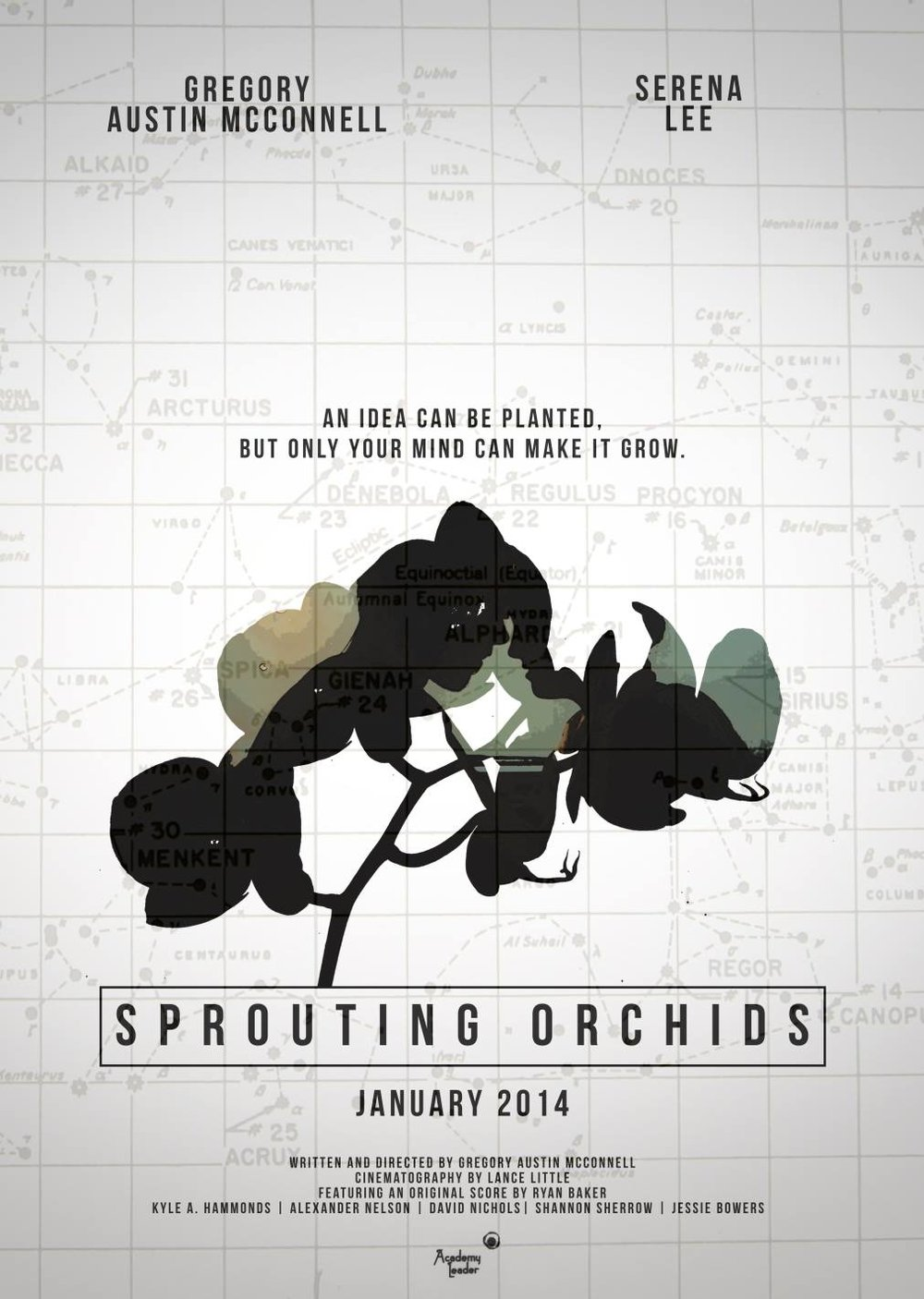 SproutingOrchidsPoster.jpeg