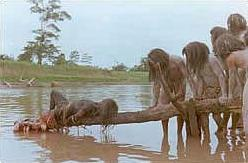Cannibal holocaust piranha scene.jpg