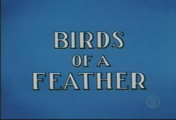 Birds of a Feather title screen.jpg