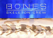 Title card for Skeleton Crew